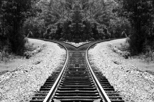 split-track